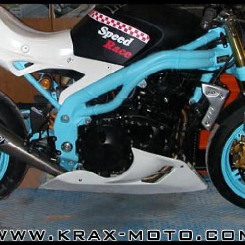 Sabot Plastic Bike CUP 04-07 - SpeedTriple 1050 - Triumph