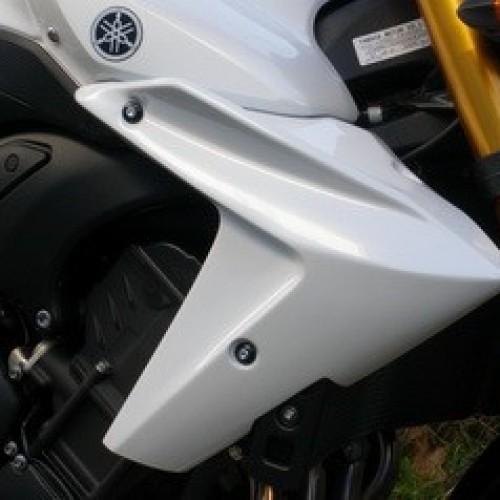 Ecopes JMV Concept - FZ8 N - Yahama