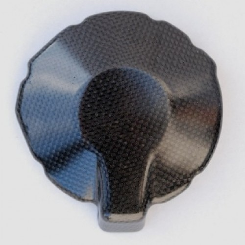 Protection carte alternateur carbone Lightech - ZX6 R 2007/08 - Kawasakin