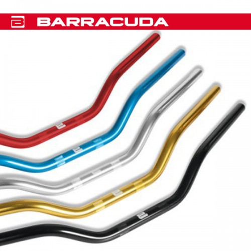 Guidon Racing Barracuda
